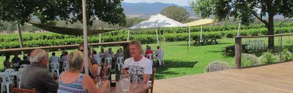 Gracebrook vinyard outdoors